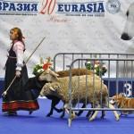 Журнал Мир собак.Евразия 2011. Пастушья служба