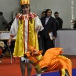 Журнал Мир собак.Евразия 2011. Конкурс костюмов