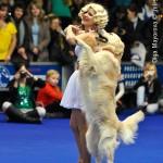 Журнал Мир собак.Евразия 2011. Фристайл - танцы с собаками