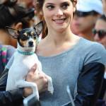 Эшли Грин и ее собака Марло той фокстерьер
