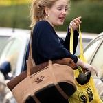 Adele певица Адель и ее собака такса Луи