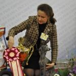 Евразия 2012 Бест левретка