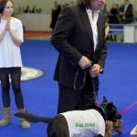 Фонд Дарящие надежду на Евразии собаки из приютов