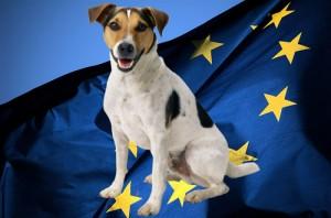 Вывоз собаки за границу требования ЕС