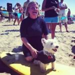 Чемпионат по серфингу среди собак