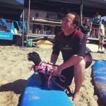 Собаки на серфинге серф серфингисты