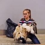 Выставка Россия 2012 ши-тцу