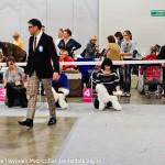 Выставка Россия 2012