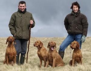 Стресс у собак сигналы примирения
